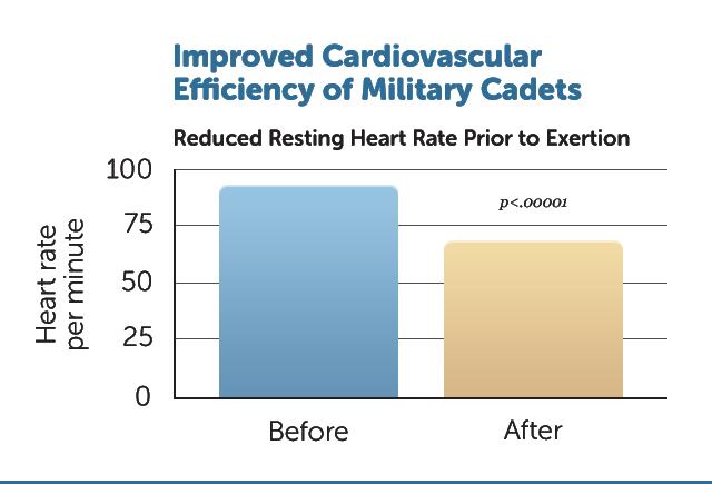D7-Cardio-Effic_Cadets